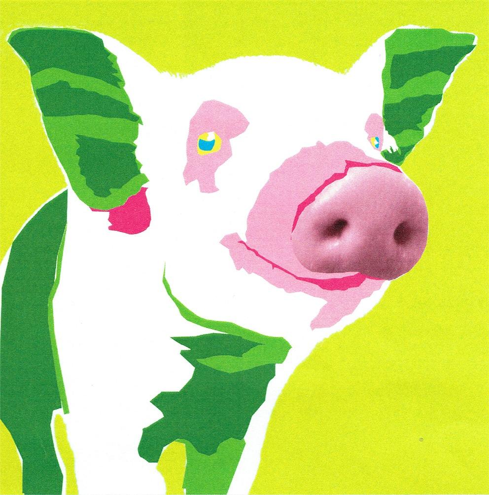 Tete de cochon façon Andy Warhol