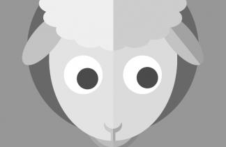 LES 3 MINUTES DE… CAROLINE<br>Extraits animation